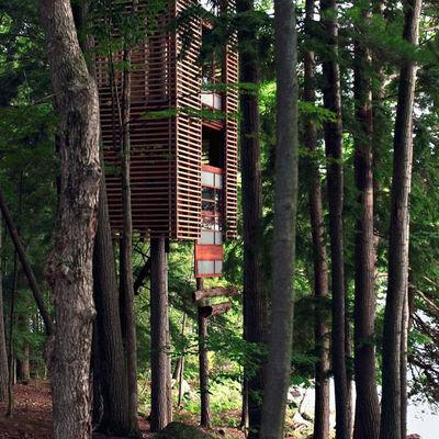 Costruire Una Casa Sull Albero Consigli Prezzi E Permessi