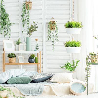 Come dosare l'effetto total white in casa