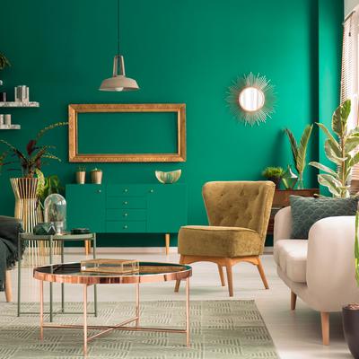 Cactus mania: decorare con stile