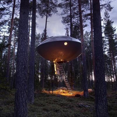 Le 20 migliori case sugli alberi del mondo