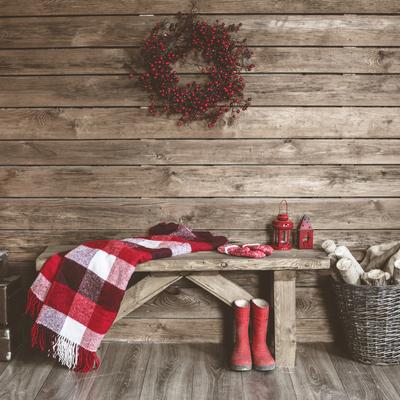 Come decorare casa con le piante natalizie