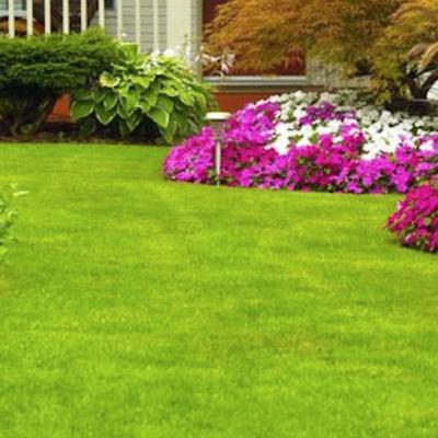 Giardini e Aiuole
