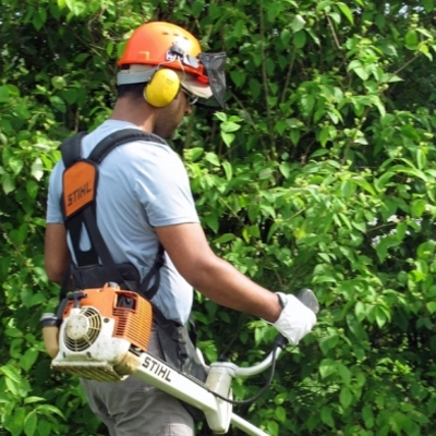 Manutenzione e ristrutturazione Giardini