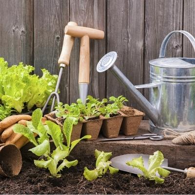 giardino ecologico