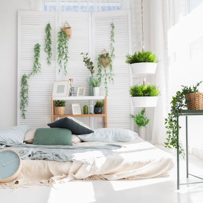 Senza terrazza e senza balcone? Ecco come fare un giardino interno