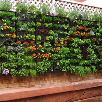 Idee di giardino verticale per ispirarti habitissimo - Crea il tuo giardino ...
