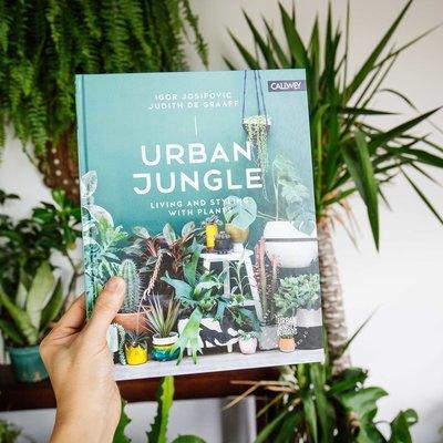 7 libri dove ispirarsi per una casa di design