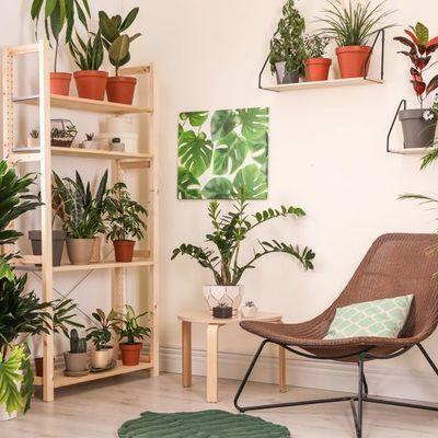 Garden room: riempire gli spazi di piante sarà il nuovo trend decor