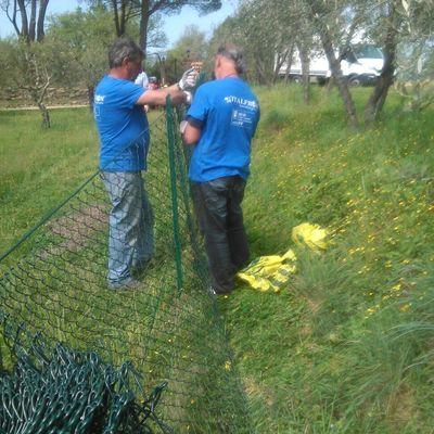 fornitura e montaggio recinzione rete metallica AREZZO