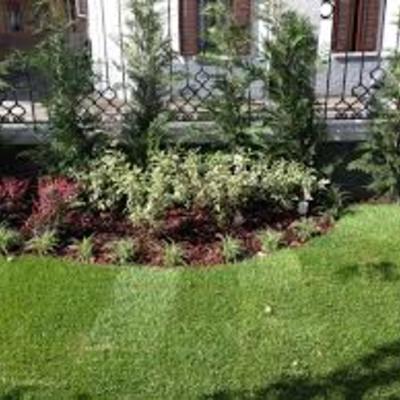 rifacimento giardino