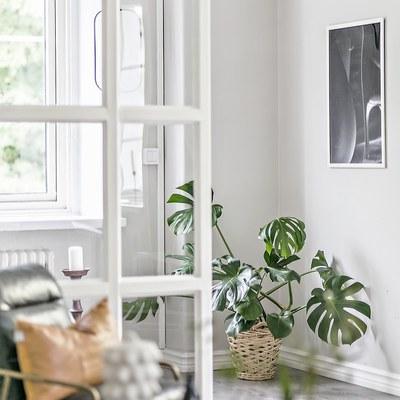 Un divisorio in vetro per il monolocale di design