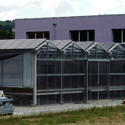 Progetto Creazione Serra Fotovoltaica 10kWp