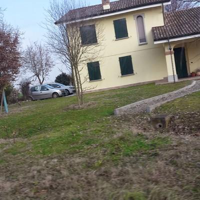 Progetta tinteggiatura esterna a Ferrara (FE)