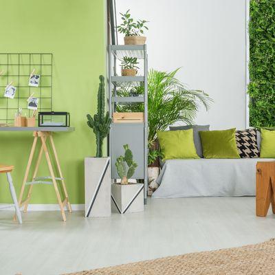 Verde que te quiero verde: il colore della felicità e del relax