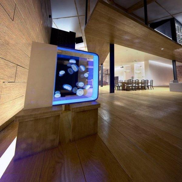 Foto acquario in casa de valeria del treste 304252 for Disegna i tuoi piani di casa gratuitamente