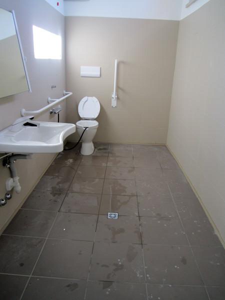 Foto bagno di scuola prima di personal supporter pulizie sanificazione disinfestazione e - Sesso bagno scuola ...