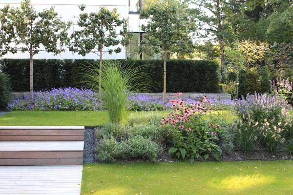 Foto giardino con prato alberi e cespugli di rossella for Cespugli giardino