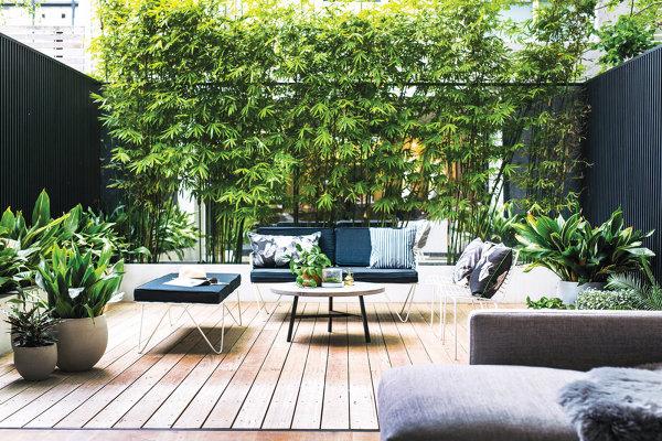 Foto idee per il giardino di rossella cristofaro 531956 for Idee per il giardino immagini