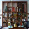 Ante per librerie