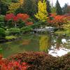 Foto: giardino giapponese