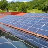Preventivo piantumazione impianto fotovoltaico fiumicino