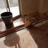 opere edili e smaltimento rifiuti