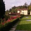 Sistemare piante terrazzo