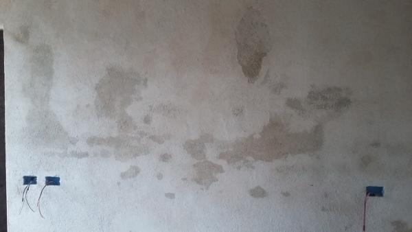 Cosa sono queste macchie sul muro?