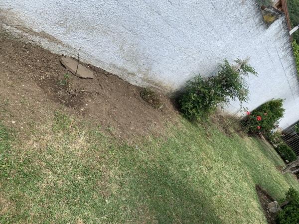 Come può essere organizzato il giardino?