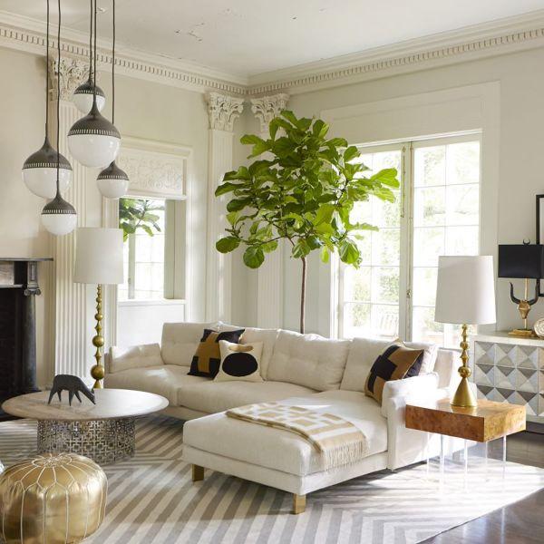 Info divano e pianta