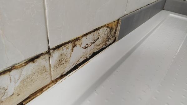 Come fare la manutenzione della doccia?