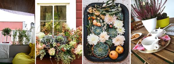 Come posso posizionare delle piante alte da balcone? - Habitissimo