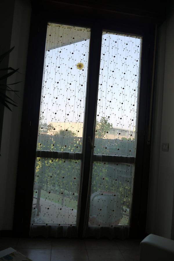 Installazione gattaiola su doppio vetro san polo parma habitissimo - Quanto costa una porta finestra in pvc ...