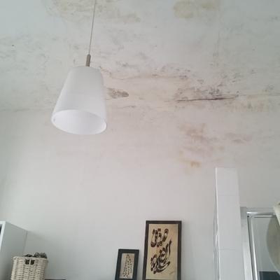 Rifacimento intonaco soffitto bagno prenestino centocelle roma roma habitissimo - Rifacimento bagno roma ...