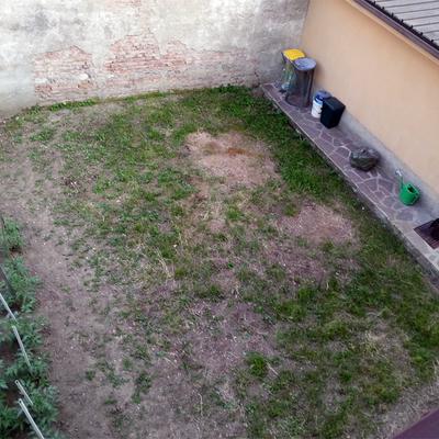 Sistemazione prato piccolo giardino verano brianza for Prato senza manutenzione