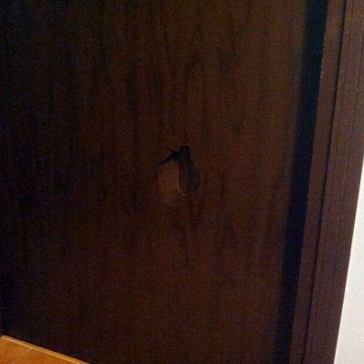 Rivestire una porta in legno borsano varese habitissimo - Verniciare una porta in legno ...