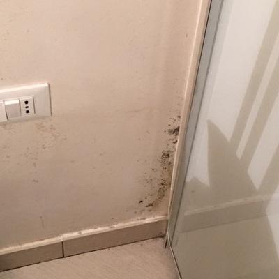 Umidità in camera da letto , muro con muffa ed acqua nel pavimento ...