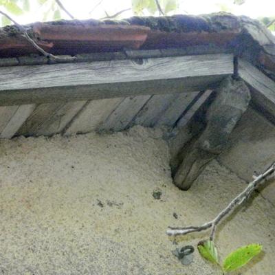 tetto lato entrata_65470