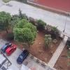 Tagliare piante alle ringhiere di recinzione del giardino