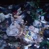 Smaltimento rifiuti domrstici