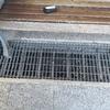 Installare Inferriate Metalliche