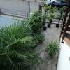 Rottura cemento del giardino esterno e installazione pavimentazione