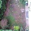 Piantare Giardino