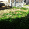 Rifacimento piccolo giardino