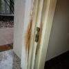 Riparazione e riverniciatura porta ingresso