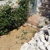 Creazione impianto di irrigazione interrato per giardino, con eventuali camminamenti