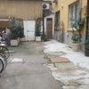Progetto virtuale per cortile condominiale