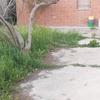 Demolire cemento non armato in giardino