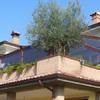 Chiusura terrazzo con tende in pvc