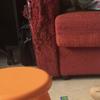 Struttura divano da rifoderare